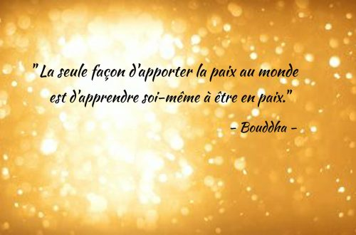 citation bouddha