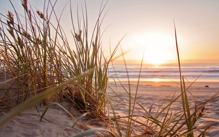 photo plage soleil