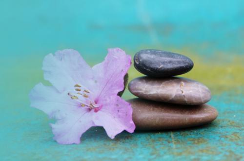 cailloux fleur zen