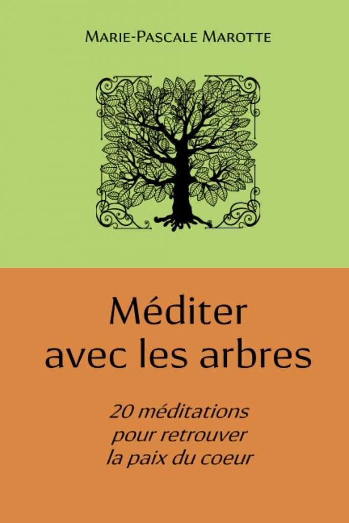 Couverture livre Méditer avec les arbres